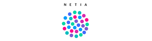 Wholesale Billing - Netia case study}