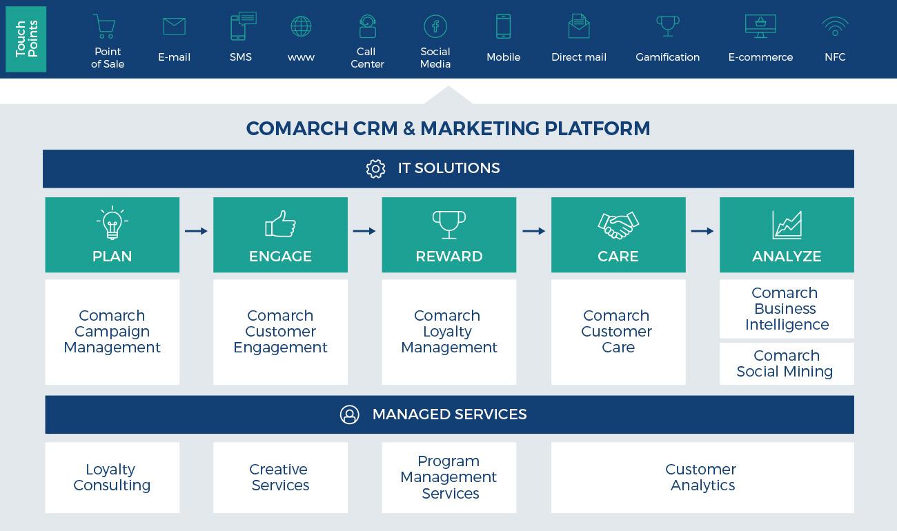 Platform as a Service Business Plan Template