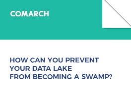How Can You Prevent Your Data Lake from Becoming a Swamp